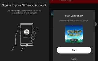 Как использовать голосовой чат Nintendo Switch