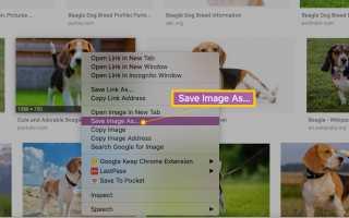 Как сохранить картинки из Google