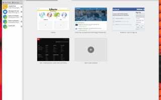 Руководство по веб-браузеру для Linux