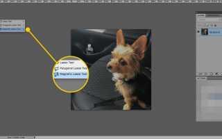 Как использовать инструмент «Магнитное лассо» в Adobe Photoshop