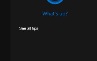 Поиск в Windows 10 не работает