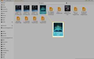 Как управлять вашей музыкальной библиотекой