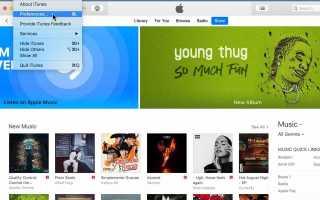 Как включить и использовать проверку звука в iTunes