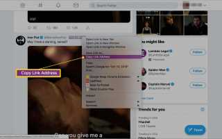 Как сохранить видео из Twitter на iOS, Android и Windows