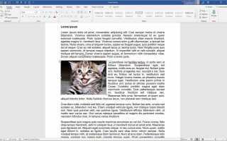 Как изменить размер изображения или объекта в Word