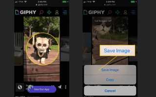 Как сохранить GIF-файлы на iPhone или iPad