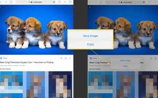 Как скачать фотографии в Интернете и сохранить на iPad