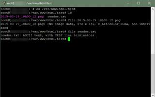 Определите тип файла с помощью команды File Linux