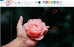 Как обрезать фотографии на ПК, Mac или смартфоне