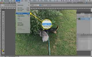 Как использовать Photoshop Сохранить для веб-инструмента