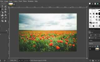 Создание черно-белой фотографии с цветным эффектом — GIMP Tutorial